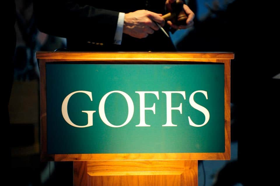 Goffs Bloodstock Sales