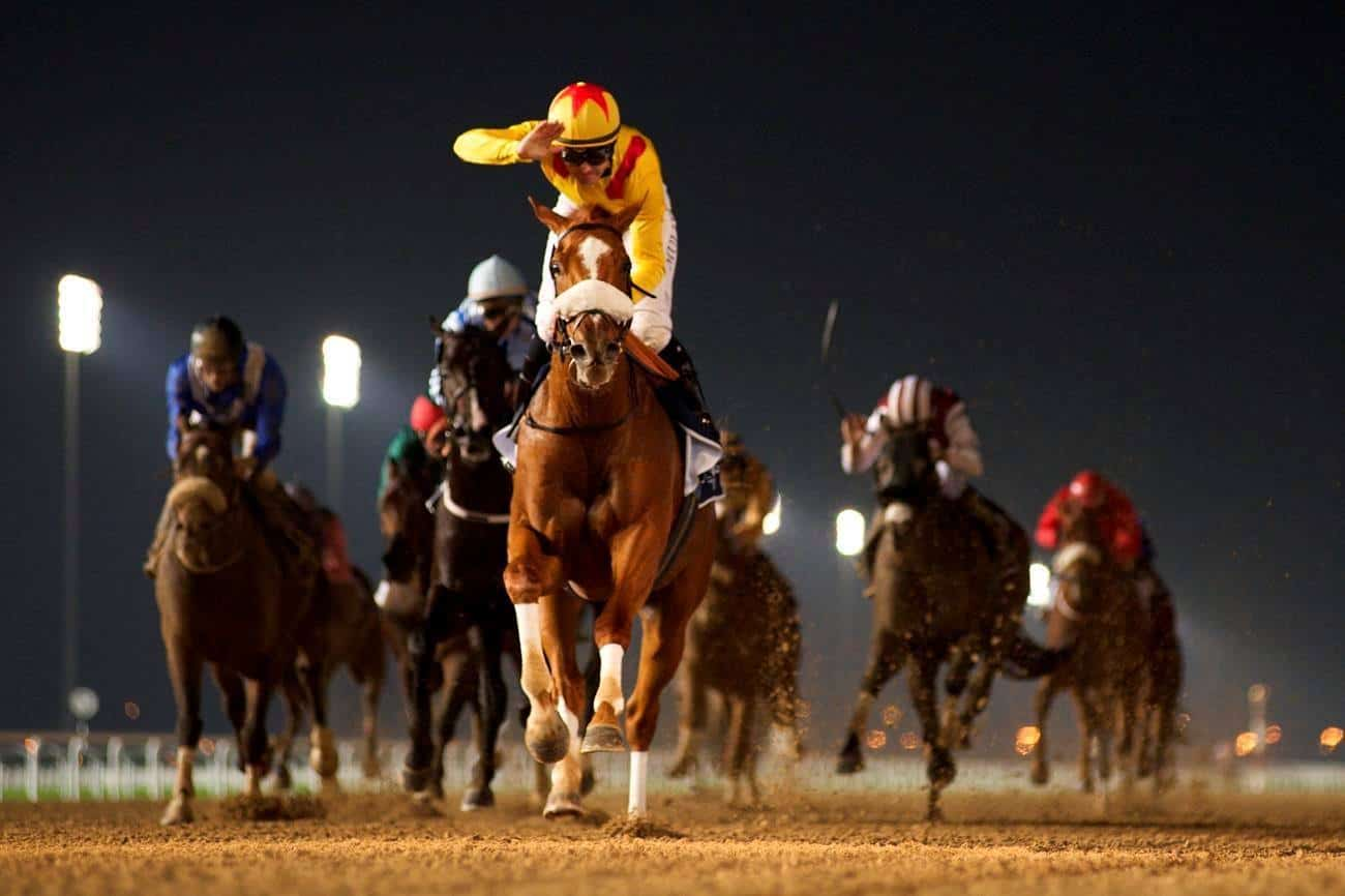 2015 Al Maktoum Challenge R1 winner, Surfer, ridden by Richard Mullen, will defend his crown at the launch of the Dubai World Cup Carnival on Thursday January 7, 2016. Credit: Dubai Racing Club//Andrew Watkins