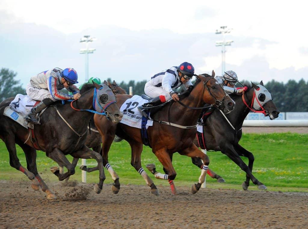 Duke Of Burden på vej mod sejren i Svenskt Derby 2016. Foto: Stefan Olsson / Svensk Galopp.
