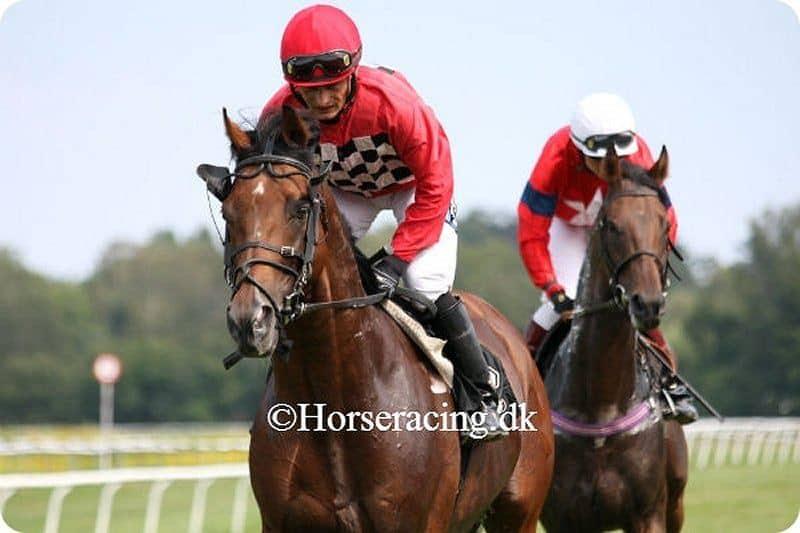 Old Pal og Per-Anders Gråberg. Foto: Horseracing.dk.