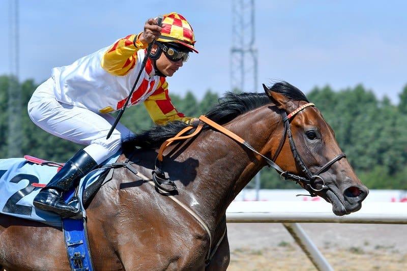 Shantou vinder Derby Day Sprint under Carlos Lopez. Foto: Stefan Olsson / Svensk Galopp.