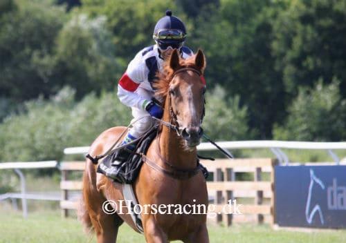 Royal Lane. Foto: Horseracing.dk