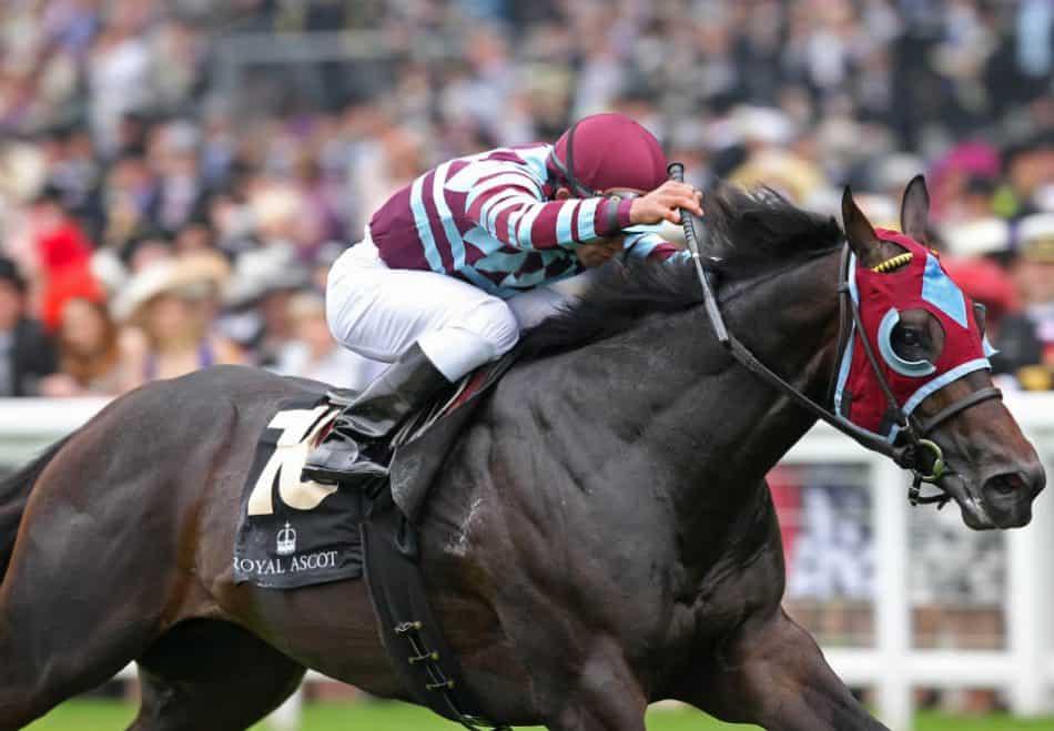 No Nay Never vinder Norfolk Stakes (Gr.2) på Royal Ascot. Foto: Coolmore.