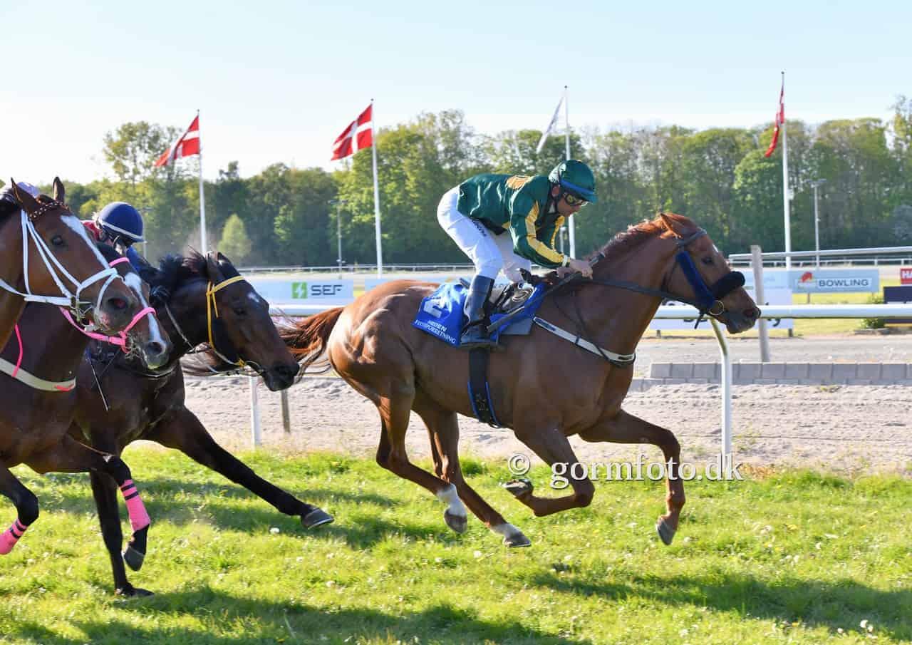 Rafael De Oliveira sejrer med Keld Chr. Karlsens Endofa Champion. Foto: Gormfoto.dk